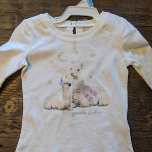 NWT Carter's 6 Month long sleeve